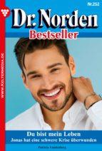 Dr. Norden Bestseller 252 - Arztroman (ebook)