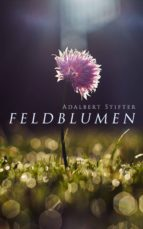 Feldblumen (ebook)