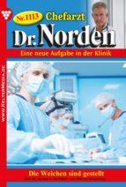 Dr. Norden 1113 – Arztroman (ebook)