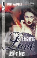 Liebe im Feuer - Dangerous Love (ebook)
