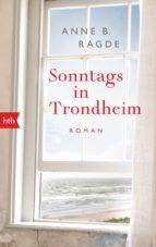 Sonntags in Trondheim (ebook)