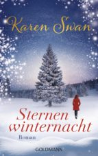 Sternenwinternacht (ebook)
