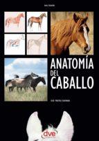 Anatomía del caballo: Guía práctica ilustrada (ebook)