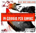 Gay forced chastity for love-In gabbia per amore (ebook)