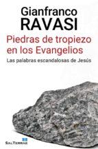 PIEDRAS DE TROPIEZO EN LOS EVANGELIOS (ebook)