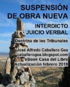 SUSPENSIÓN DE OBRA NUEVA. INTERDICTO-JUICIO VERBAL (ebook)