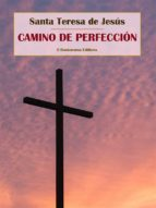 Camino de perfección (ebook)