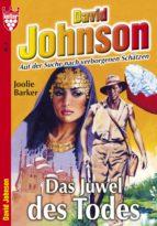 David Johnson 2 - Abenteuerroman (ebook)