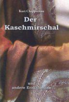 Der Kaschmirschal (ebook)