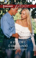 A virgem e o vagabundo (ebook)