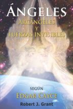 Angeles, Arcangeles y Fuerzas Invisibles (ebook)