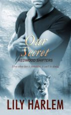 Our Secret (ebook)