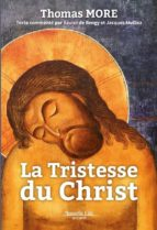 La Tristesse du Christ (ebook)