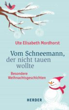 Vom Schneemann, der nicht tauen wollte (ebook)