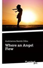 WHERE AN ANGEL FLEW