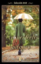 Un perfecto milagro (ebook)