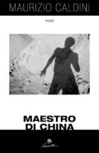 Maestro di China (ebook)