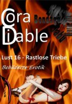 Lust 16 – Rastlose Triebe (ebook)