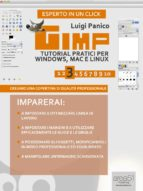Gimp. Tutorial pratici per Windows, Mac e Linux. Livello 3 (ebook)