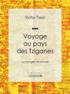 Voyage au pays des Tziganes (ebook)