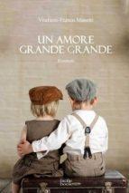 Un amore grande grande (ebook)