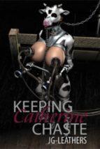 Keeping Catherine Chaste (ebook)